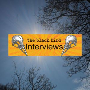 The Blackbird Interviews